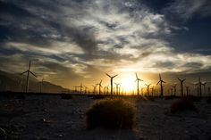 The wind farm in Cabazon/Palm Springs