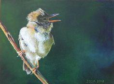 bosrietzanger (marsh warbler)