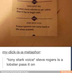 Steve the Lobster