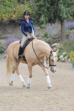 Blog by Linda Parelli: Ride Forward for Relaxation! http://parellinaturalhorsetraining.com/news/ride-forward-for-relaxation/