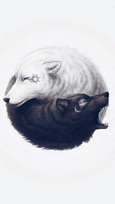 Yin and Yang wolf tattoo. This is very unique! The white wolf representing the good side and appearing to be peaceful, while the evil side (the black wolf) is looking angry or as if it is attacking something. Yin Yang Tattoos, Wolf Tattoos, Body Art Tattoos, Tattoo Ink, Future Tattoos, Amazing Art, Awesome, Fantasy Art, Fantasy Wolf