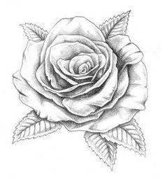 bildergebnis f r tattoo rose vorlage tattoo pinterest rose und vorlagen. Black Bedroom Furniture Sets. Home Design Ideas