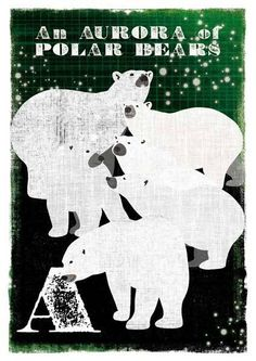 """An aurora of polar bears, an ostentation of peacocks, an embarrassment of pandas... Collective nouns, the terms used to described a group, can be an imaginative bunch. We're used to herds or flocks or even gaggles, but some of the lesser-known collective nouns for animals seem fabulously unlikely (a fact that's even acknowledged within the phrase """"an implausibility of gnus"""")."""