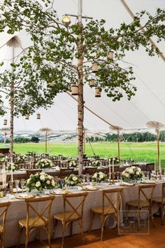 Bring nature into your reception space, indoors or out, with lush greenery and towering trees.