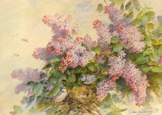 """""""Lilacs and Birds"""" by Madeleine Jeanne Lemaire"""