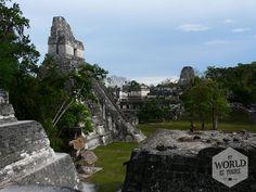 Het complex is gigantisch. De Mayatempels komen ons inmiddels bekend voor, maar het blijft indrukwekkend hoe rijen trappen zo hoog de hemel in reiken, ooit neergezet zonder alle hulpmiddelen die er vandaag de dag zijn. #Tikal #Guatemala #Mayas