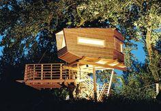 Baumraum treehouses, Baumraum Osanbruck Germany, treehouse dwellings, modern treehouses, nature retreats treehouses, baum1.jpg