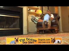 """Dogsie Dog Shirt... For when your baby has those """"accidents"""".. or in heat...just-in-case...when your away from home..visiting another home etc.."""