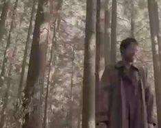 Supernatural Comic, Supernatural Bloopers, Supernatural Tattoo, Supernatural Imagines, Winchester Supernatural, Supernatural Seasons, Winchester Boys, Winchester Brothers, Spn Memes