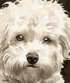 BICHON FRISE Sepia Art Print Signed by Watercolor Artist DJ Rogers