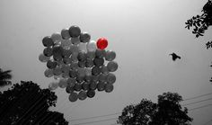 https://flic.kr/p/NjTa72   festive dawn   the delightful sky of pohela boisakh .. ( the first day of the year according to bengoli calendar0 ........ Copyright :Abdul Malek Babul FBPS . Cell:( +880) 01715298747 & 01837805350 E mail : babul.photopassion@gmail.com bimboo.babul@yahoo.com www.flickr.com/photos/55321771@N08
