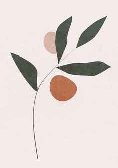 This modern, boho-style botanical print is perfect for your kitchen, bedroom or child's room. Wal Art, Minimalist Art, Botanical Prints, Art Inspo, Line Art, Art Drawings, Art Sketches, Art Projects, Canvas Art