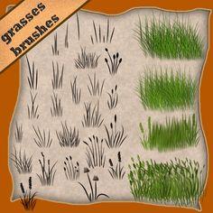 grasses by roula33.deviantart.com on @deviantART