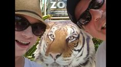 TOUR:  NAPLES ZOO at