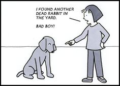 From today's Dog In Charge comic strip  March 29, 2012    So guilty!
