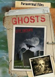 This book presents a collection of extraordinary, seemingly inexplicable tales of hauntings from different times and places.