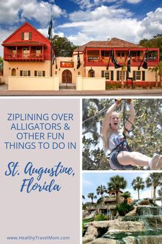 Ziplining over alligators & 8 other ways to catch a thrill in St. Florida Keys, Florida Springs, Visit Florida, Florida Vacation, Florida Travel, Travel Usa, Travel Tips, Anna Maria Island, Daytona Beach