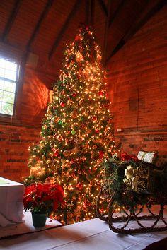 202 best biltmore estate christmas images biltmore estate rh pinterest com