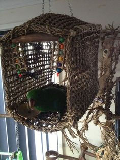 """For a safer net for our feathered friends. {""""Seagrass cabana house"""" - No, seagrass is not a traditional net that can catch claws. It actually chews into tiny bite sized pieces and is perfectly safe. Diy Parrot Toys, Diy Bird Toys, Parrot Stand, Bird Stand, Diy Bird Cage, Bird Cages, Bird Aviary, Bird Perch, African Grey Parrot"""