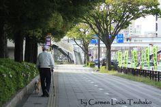 #Toyohashi # Japan