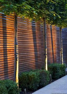 78 ideas of modern garden fence designs for summer ideas lovely small front garden design waterfall best ideas Backyard Fences, Garden Fencing, Backyard Landscaping, Landscaping Ideas, Modern Landscaping, Backyard Privacy, Patio Fence, Front Garden Ideas Driveway, Paving Ideas