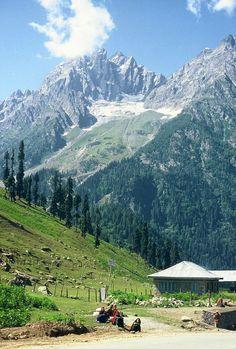 Sonamarg (Medows of Gold), India Pakistan Travel, India Travel, Kashmir India, Azad Kashmir, Kashmir Tour, Kashmir Pakistan, Places To Travel, Places To Visit, Picnic Spot