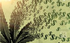 Mar 25: MONEY GROWS ON CANNABIS PLANTS. Cannabis industry sales projected to grow from $5.4B in 2015 to $21B in 2020.With nationwide legalization of marijuana use around the corner, the economic benefits of the cannabis industry are only now beginning to be realized. Legalizing marijuana consumption, or at least its medicinal use, has been a nationwide debate for years.
