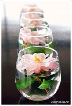 Prettiest spring wedding ideas---Floating Florals in the glasses for wedding reception centerpieces, wedding tablescapes, wedding table decorations diy ideas. Spring Wedding, Dream Wedding, Wedding Day, Trendy Wedding, Wedding Tables, Rustic Wedding, Simple Wedding Reception, Wedding Anniversary, Spring Party