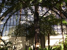 Balboa Park - inside the Conservatory