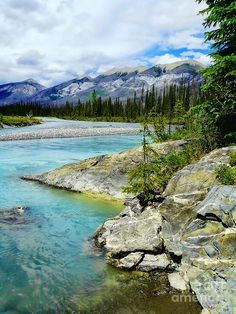 ✯ On the way to Banff in Alberta, Canada