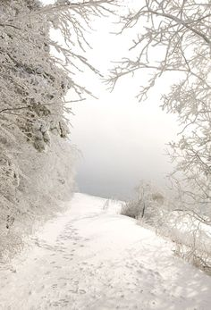 That feeling of being alone in the world when you're the first one to break through fresh snow along a country path.