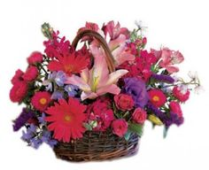 Chic Blooms Flower Basket to Puerto-Rico Cheap Flowers, Edible Flowers, Cut Flowers, Send Flowers, Flower Centerpieces, Flower Decorations, Flower Arrangements, Flowers Canada, Discount Flowers