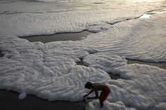 FOAM ON THE WATER: A man collected water as he bathed in the Yamuna River, which was polluted with foam from industrial waste, on the outskirts of New Delhi Friday. (Daniel Berehulak/Getty Images)