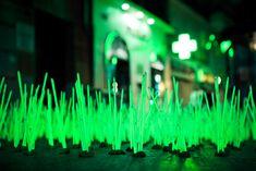 Luzinterruptus - Malas hierbas mutantes