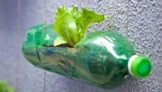 10 maneiras de reutilizar garrafas PET #upcycle #reciclagem #artesanato