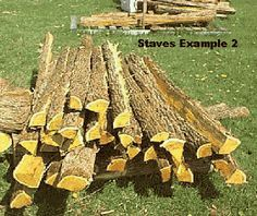 Osage Orange Bow Staves  - we have lots of Osage Orange trees here
