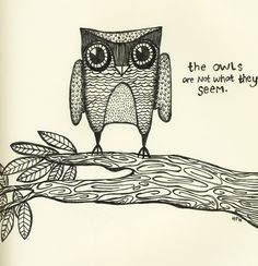 'The Owls Are Not What They Seem' by Hannah Hinckley