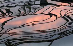 Paisaje cultural de los arrozales en terrazas de los hani de Honghe -Situado al sur de la Provincia de Yunnan, este sitio de 16.603 hectáreas es notable por las espectaculares terrazas que se escalonan desde las laderas escarpadas de los Montes Ailao hasta las orillas del Río Rojo