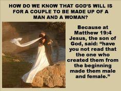 Matthew 19:4
