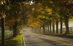 One of the roads running through the Rolling Rock Country Club near Ligonier, Pennsylvania.  Heaven on earth to me, especially in autumn!