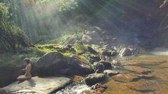 #FlorestadoUaimii #MinasGerais #Viagem #Natureza #Meditação