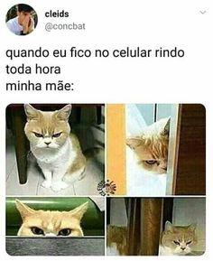 New Memes Brasileiros Mae 16 Ideas Wtf Funny, Funny Jokes, Hilarious, Stupid Funny, Comic Anime, Otaku Anime, New Memes, Love Memes, Dankest Memes