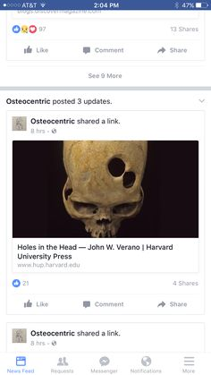 Skull Anatomy, Harvard University Press