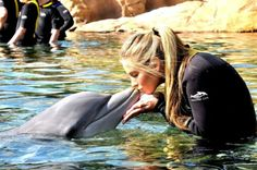 aww I remember being a Sea World trainer for a day!  I want to do it again!