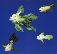 Bok Choy Fish#Repin By:Pinterest++ for iPad#