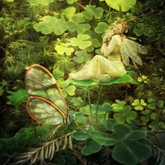 """Fairies in Ireland are sometimes as big as we are, sometimes bigger, and sometimes, as I have been told, about three feet high.""  ― W.B. Yeats    art:http://jinxmim.deviantart.com/"