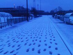 All footsteps are mine :-) Winter training: 7.00 AM (near Olympic Stadium Amsterdam