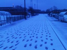 All footsteps are mine :-) Winter training: 7.00 AM (near Olympic Stadium Amsterdam