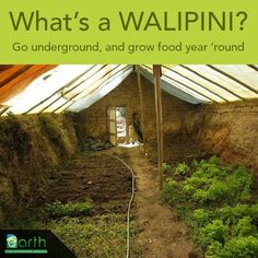 Walipini Greenhouse - a great way to garden, especially in hot and cold climates. The ground sidewalls keeps it cooler and warmer, rather than hot and cold.