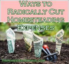 "Ways to Radically Cut Homesteading Expenses Homesteading  - The Homestead Survival .Com     ""Please Share This Pin"""